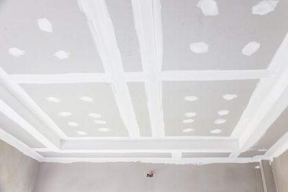 Ceiling Repairs in Albany